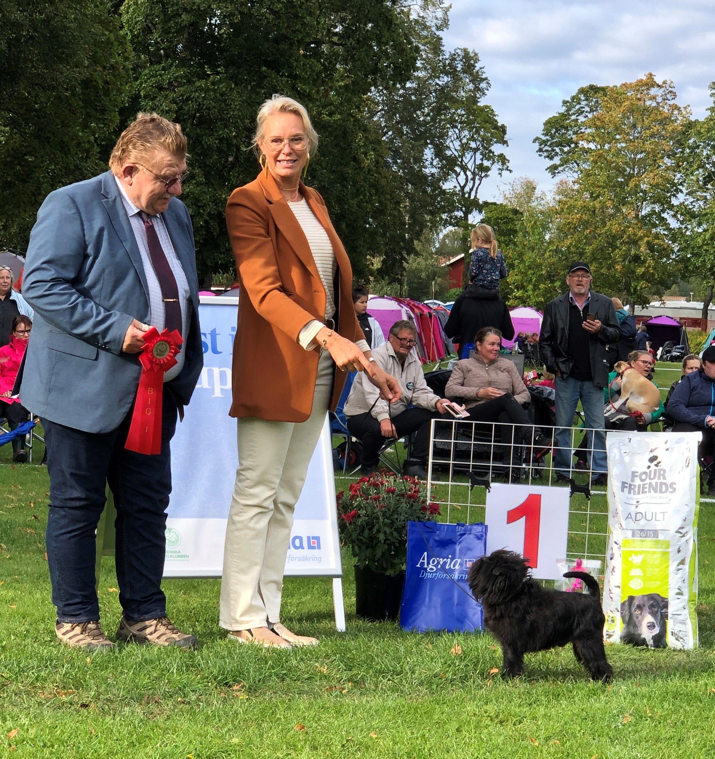 Bosse winning Best In Group by judge Sonny Ström
