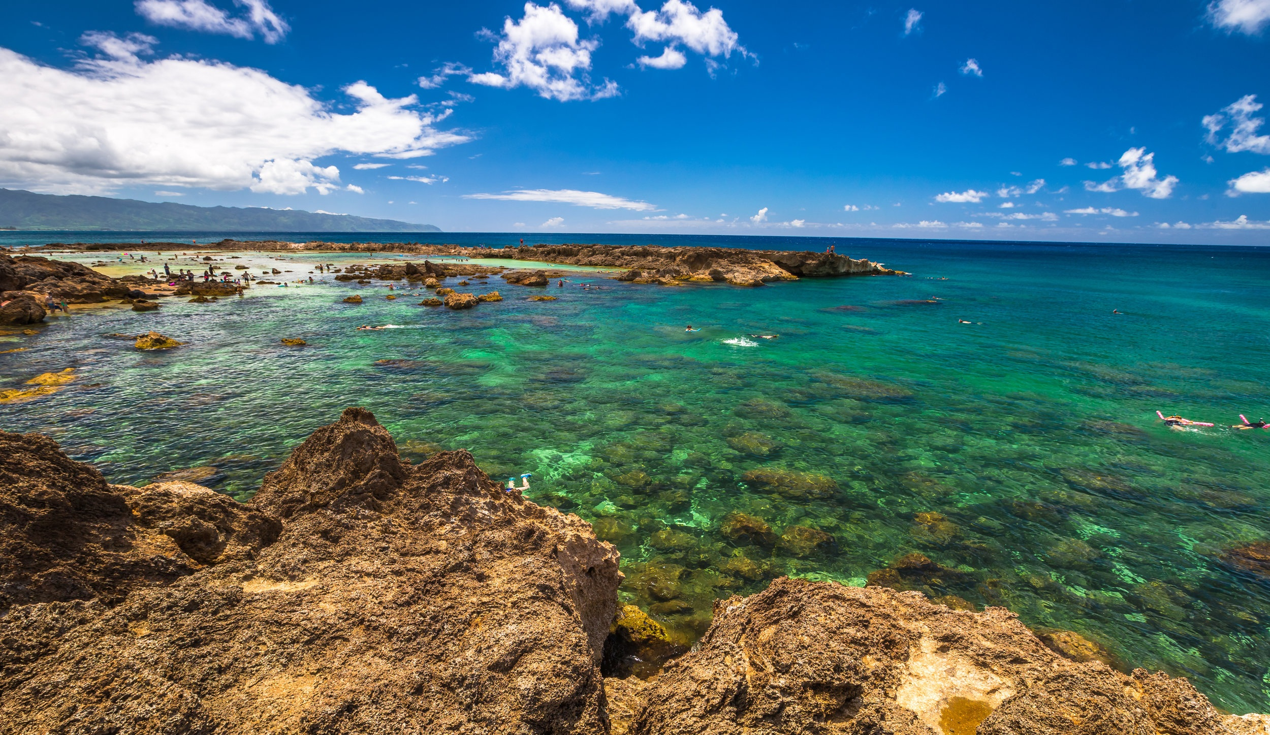 Sharks-Cove-North-Shore.jpg