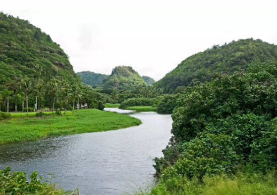 waimea-valley.PNG