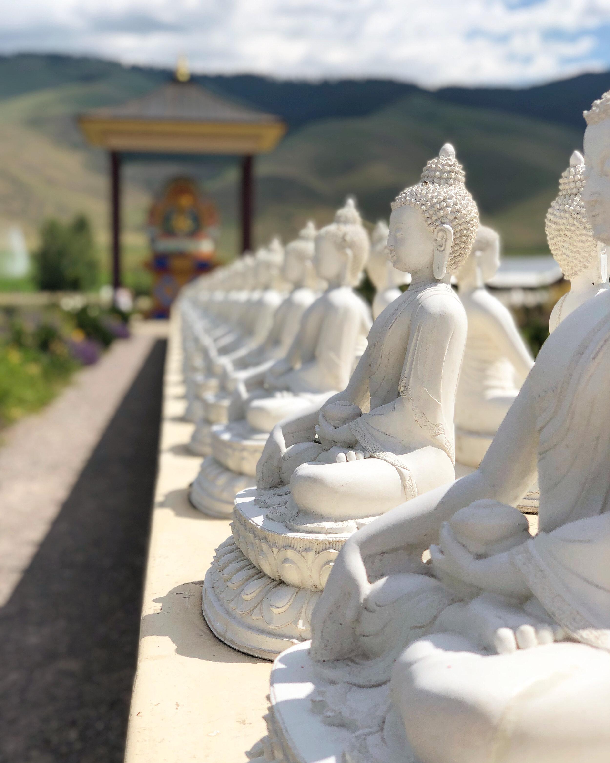 The Garden Of One Thousand Buddhas Arctictumbleweed