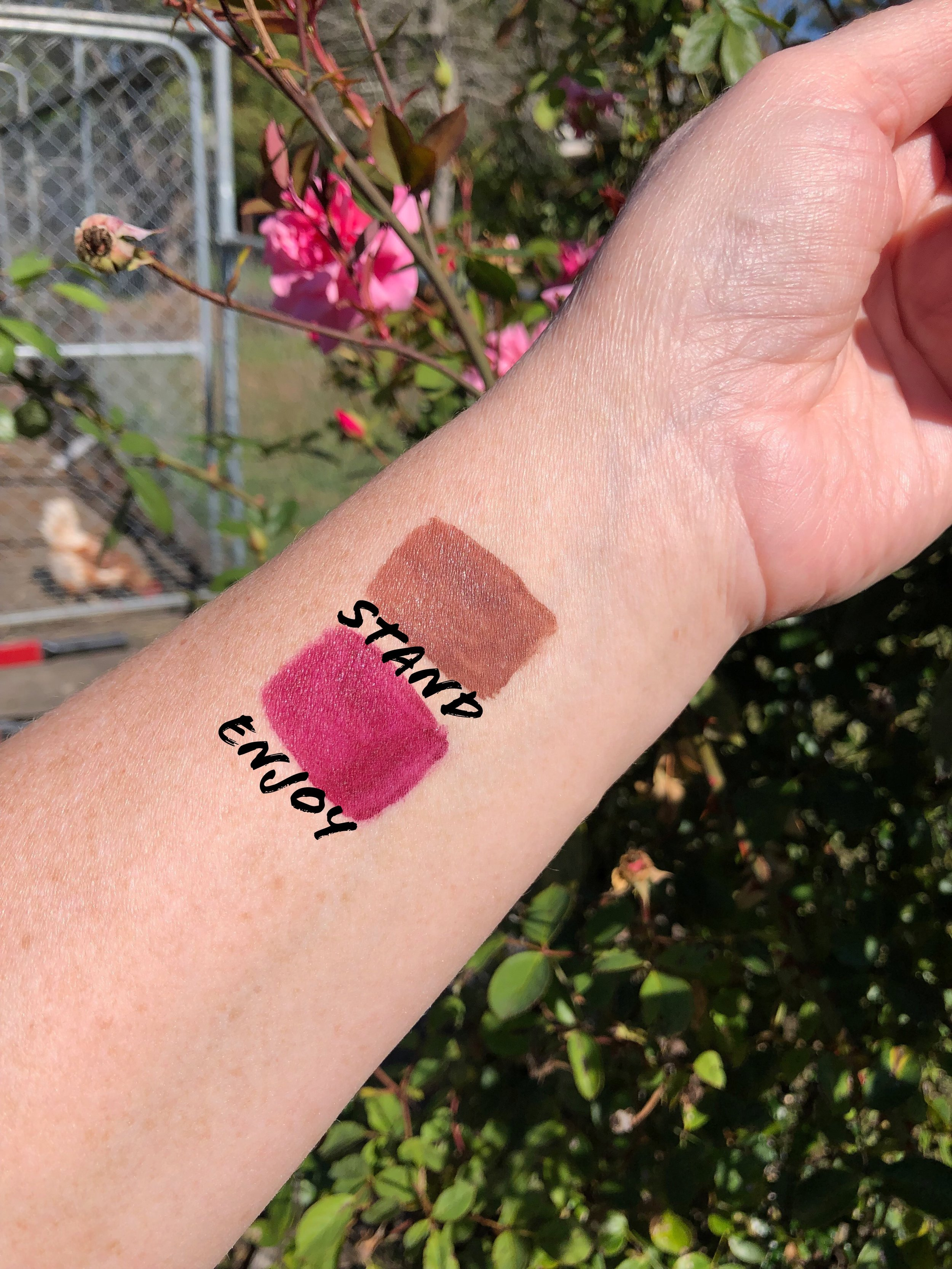 Loreal Rouge Signature Matte Swatches.jpg