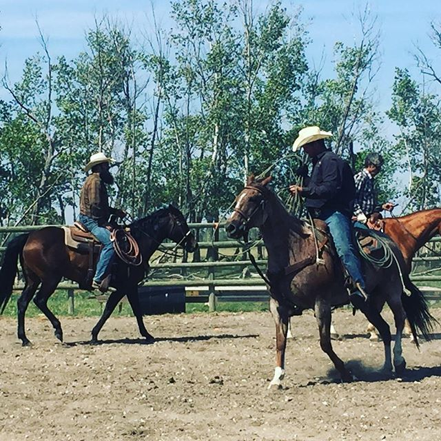 #nationaldayofthecowboy #cowboys #mrra #ranchrodeo #horse #arena