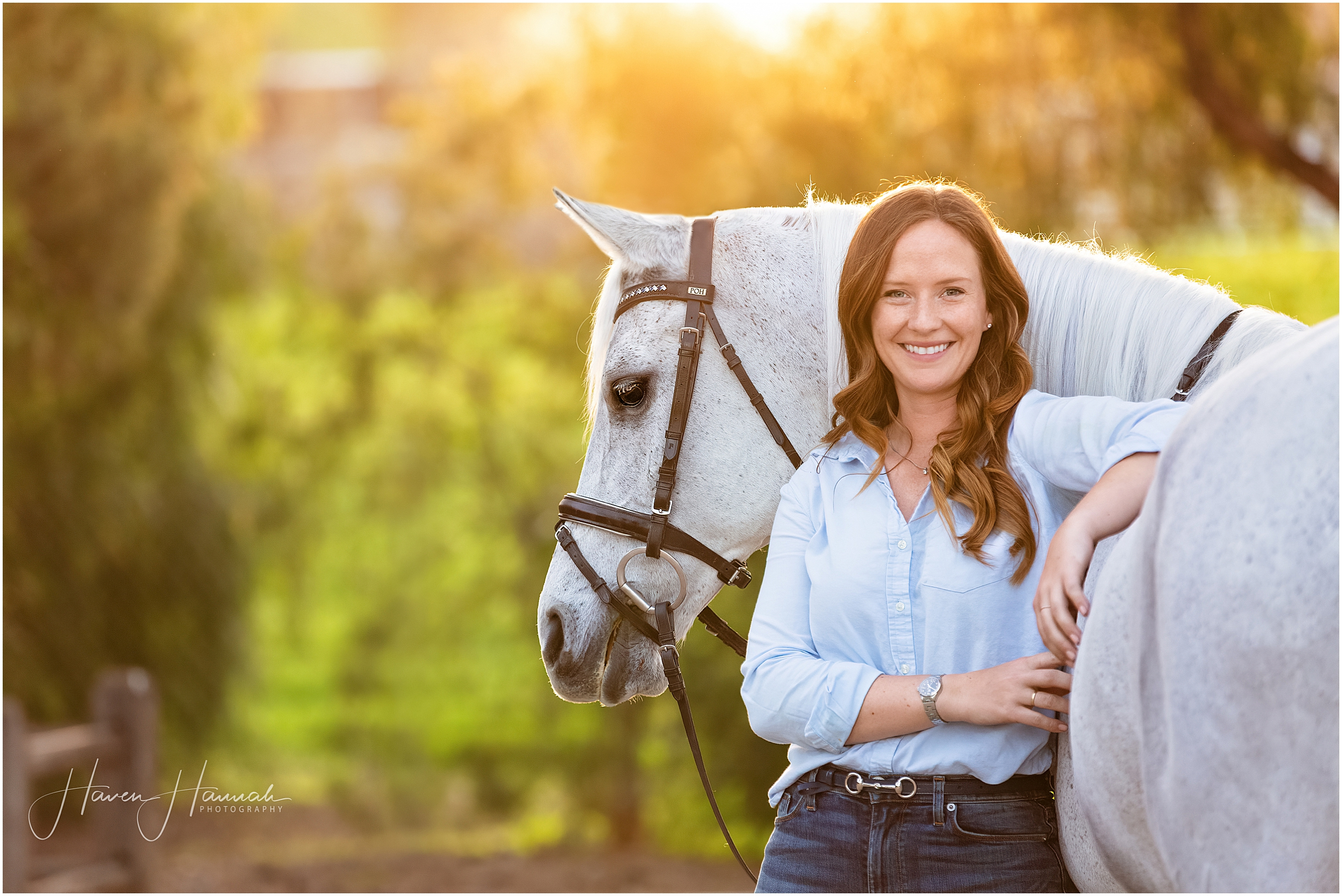 horse-and-rider-portraits