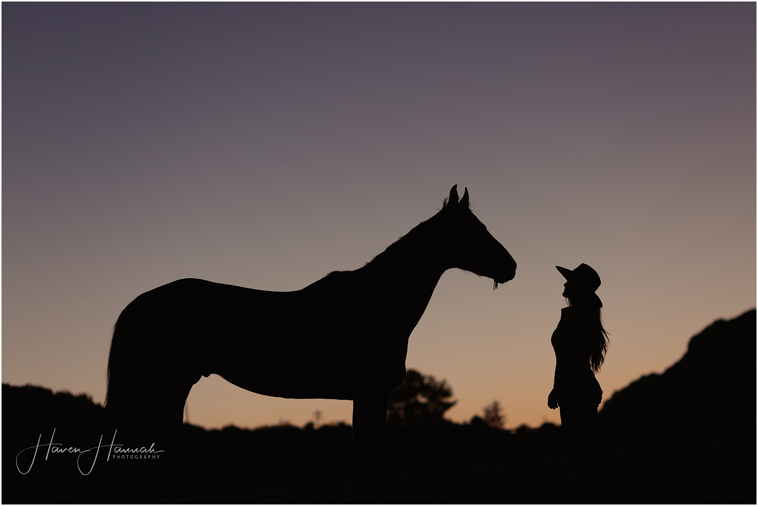 los-angeles-horse-and-rider-photography