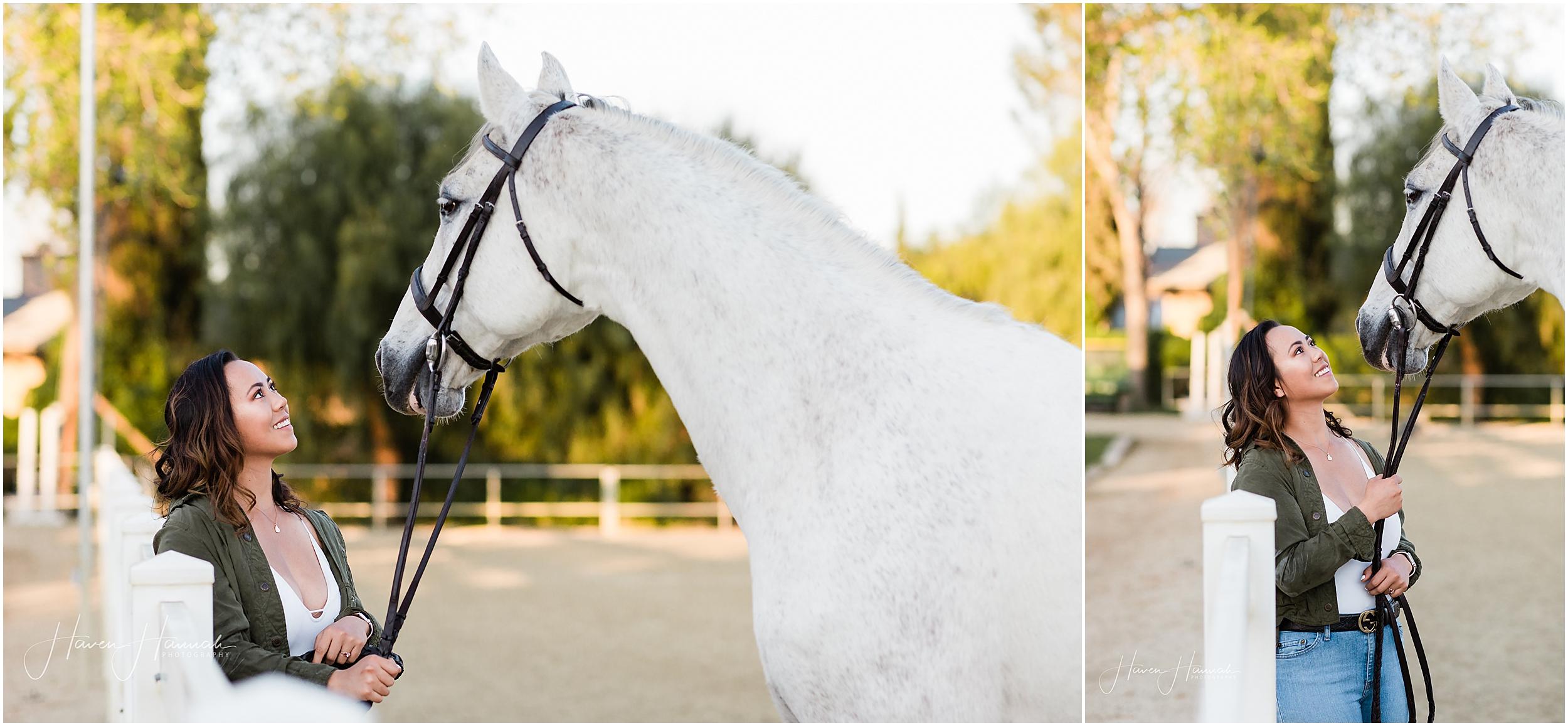 equine-portrait-photography