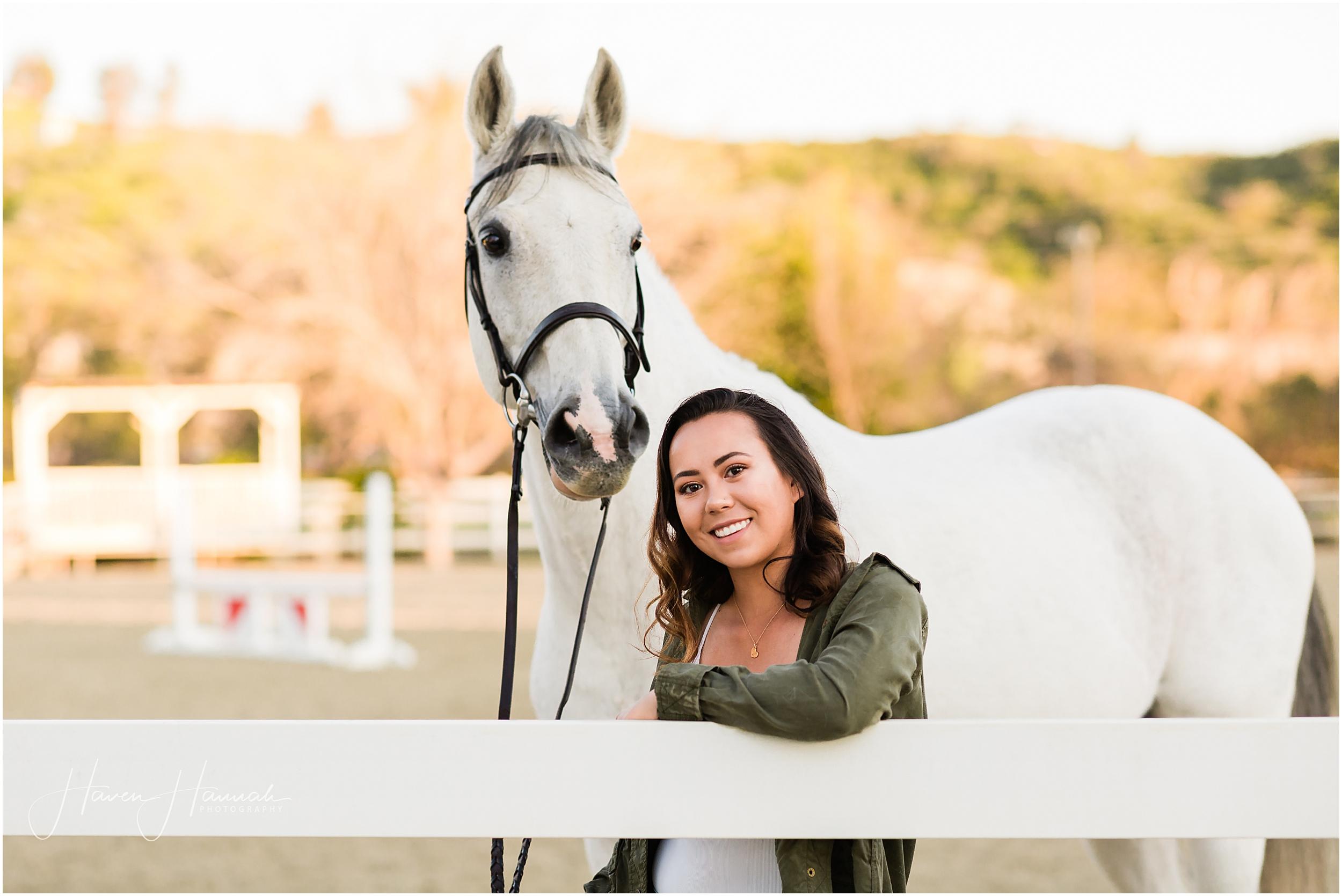 horse-and-rider-photos