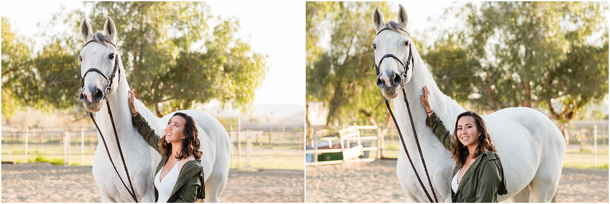 los-angeles-equestrian-photography