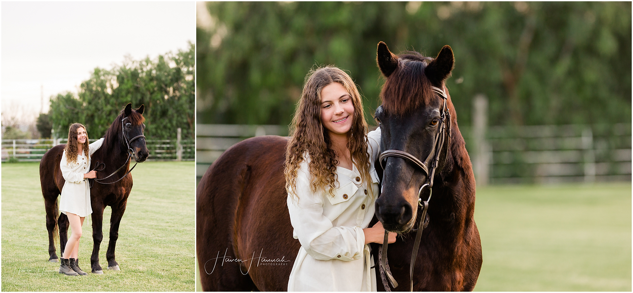 equestrian-photographer