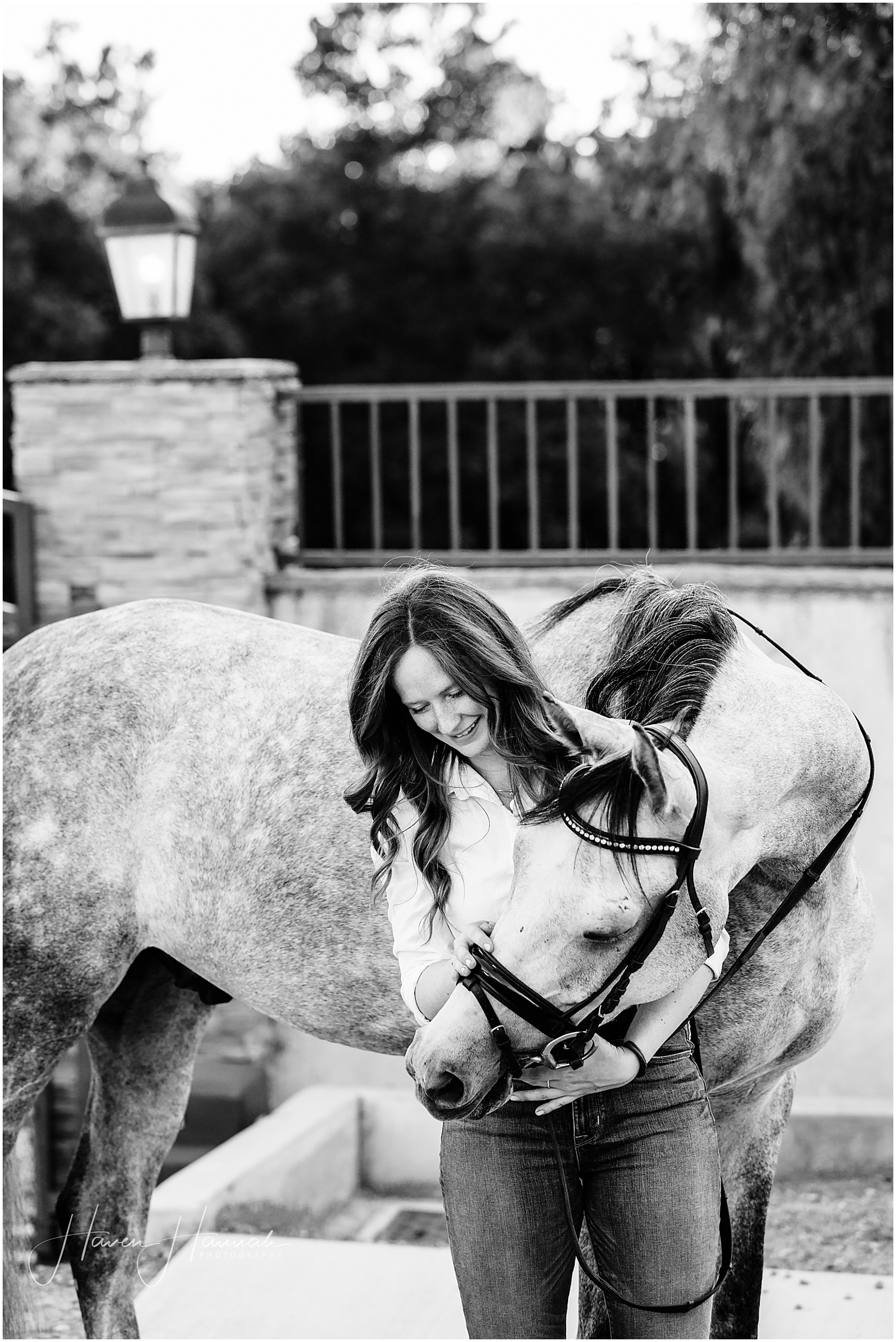 los-angeles-equine-photographer