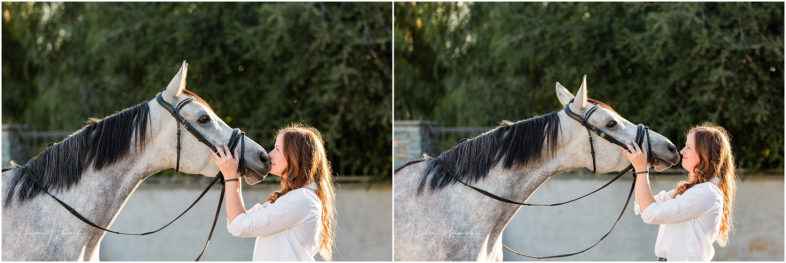 los-angeles-equestrian-portraits