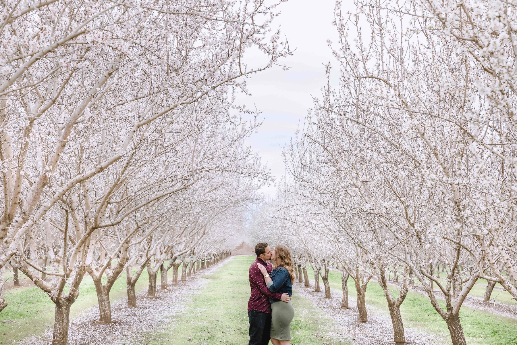 Chico blooming orchards engagement photos1.jpg