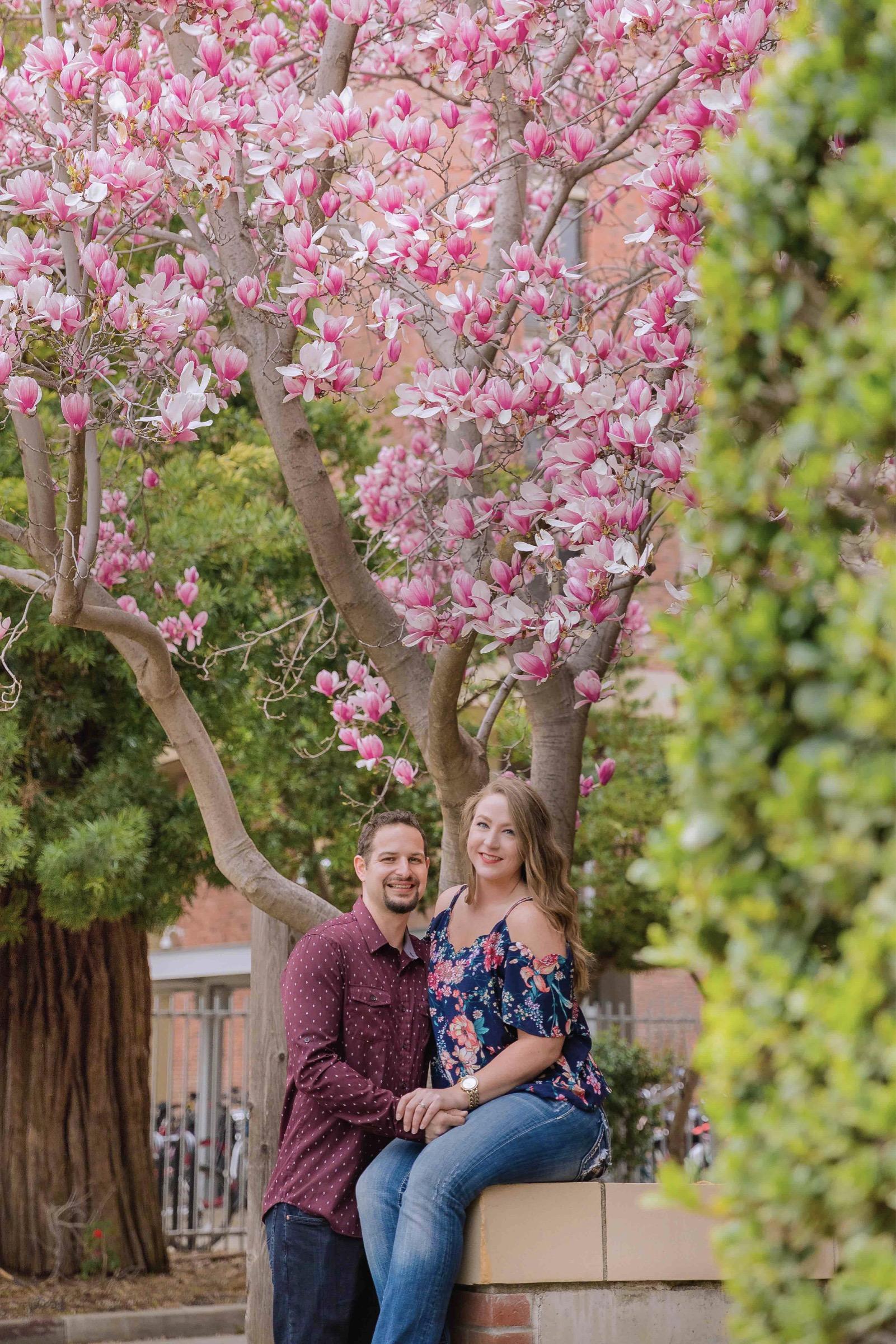 Chico blooming orchards engagement photos4.jpg