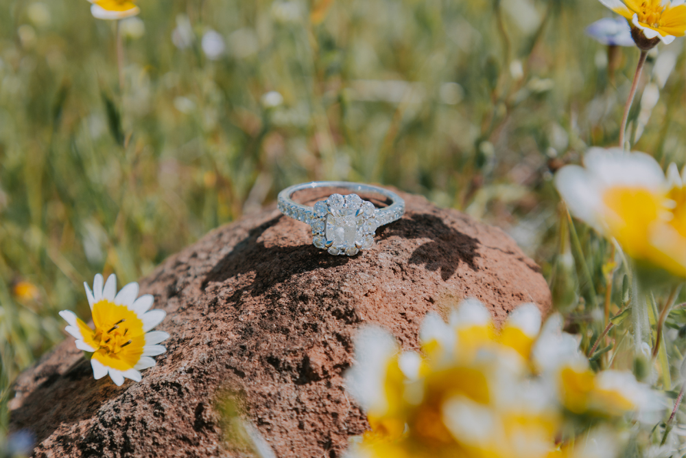 Sprin-Engagement-Photoshoot-Upper-Bidwell-Park-Chico-California10.jpg