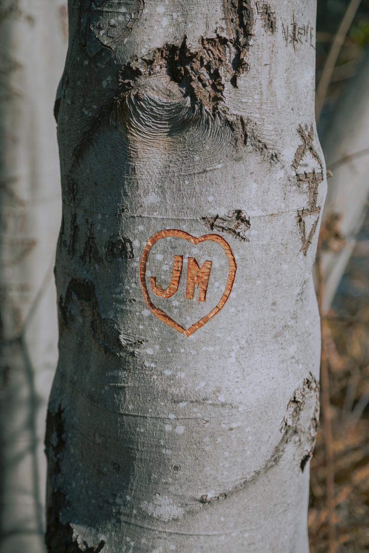 Sprin-Engagement-Photoshoot-Upper-Bidwell-Park-Chico-California37.jpg