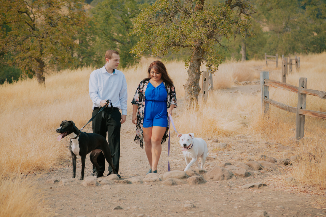 Chico-ca-engagement-photographer-with-dogs-Engagement-33.jpg
