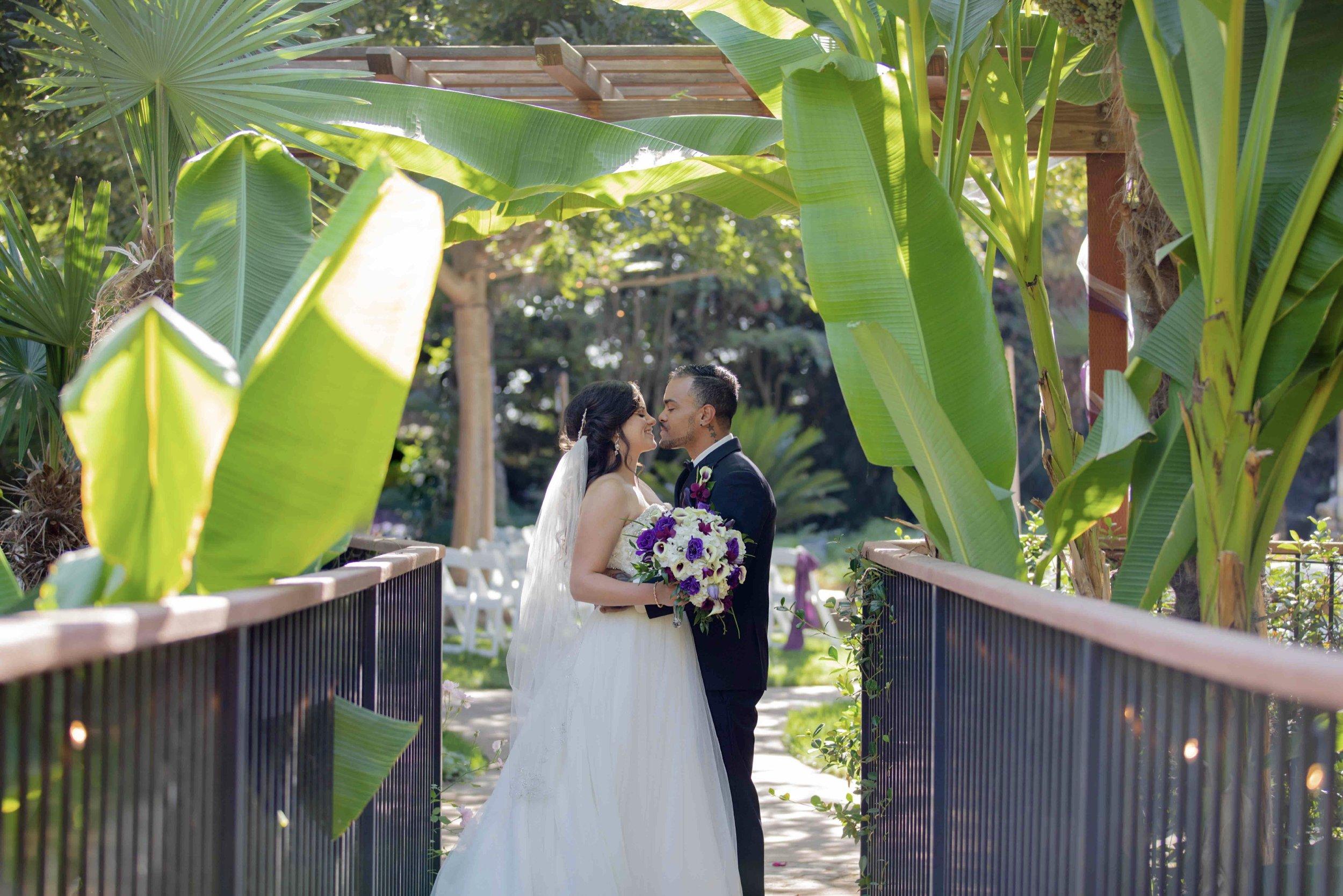 The Palms Hotel Wedding Photography_65.jpg