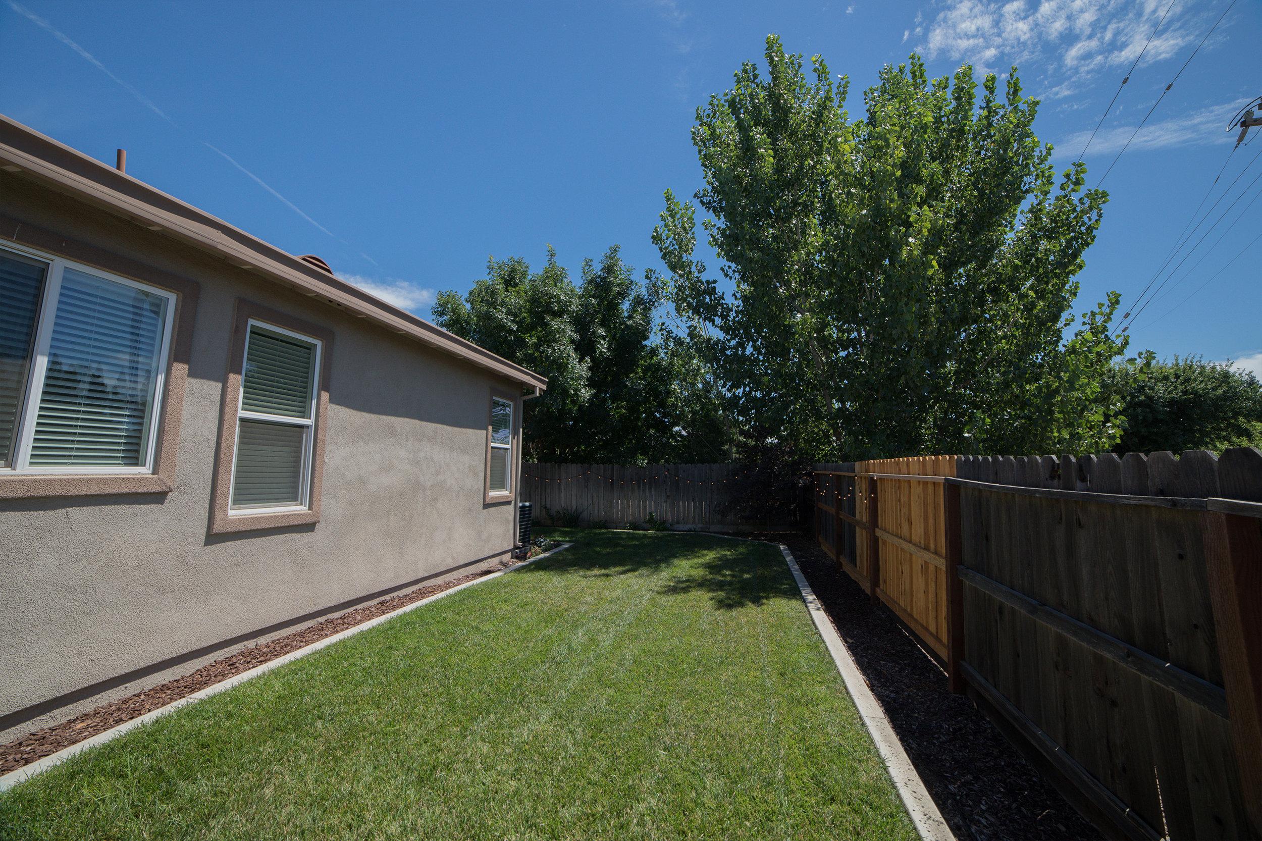 Backyard - 08.jpg