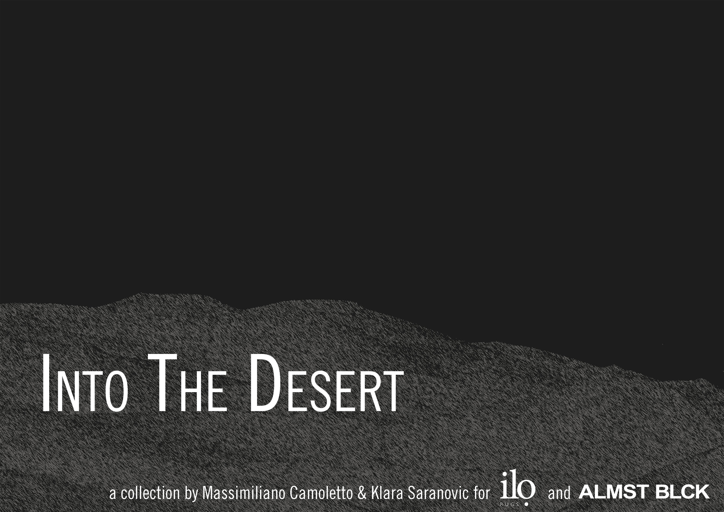 Into the Desert.jpg
