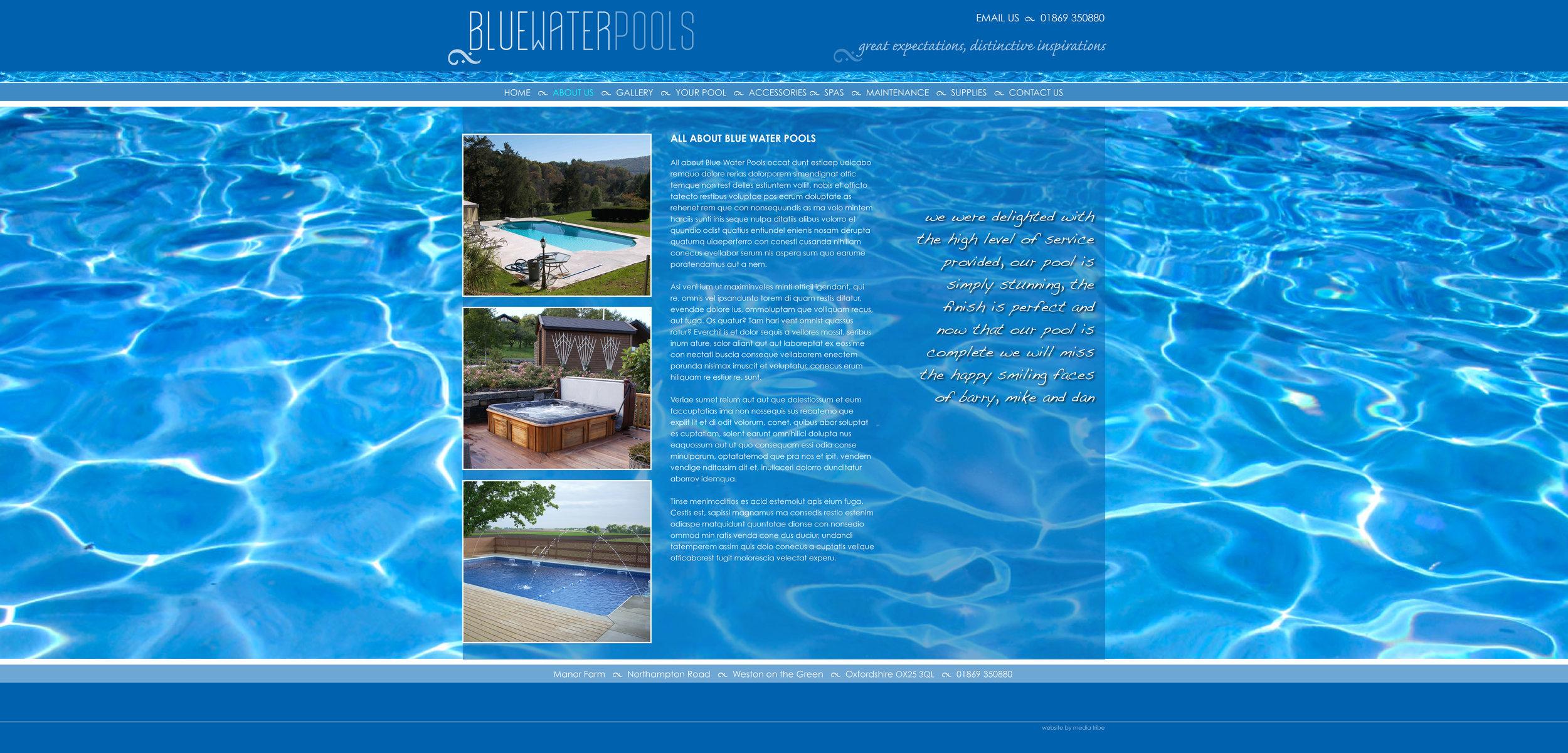 BWP-Website-design4.jpg