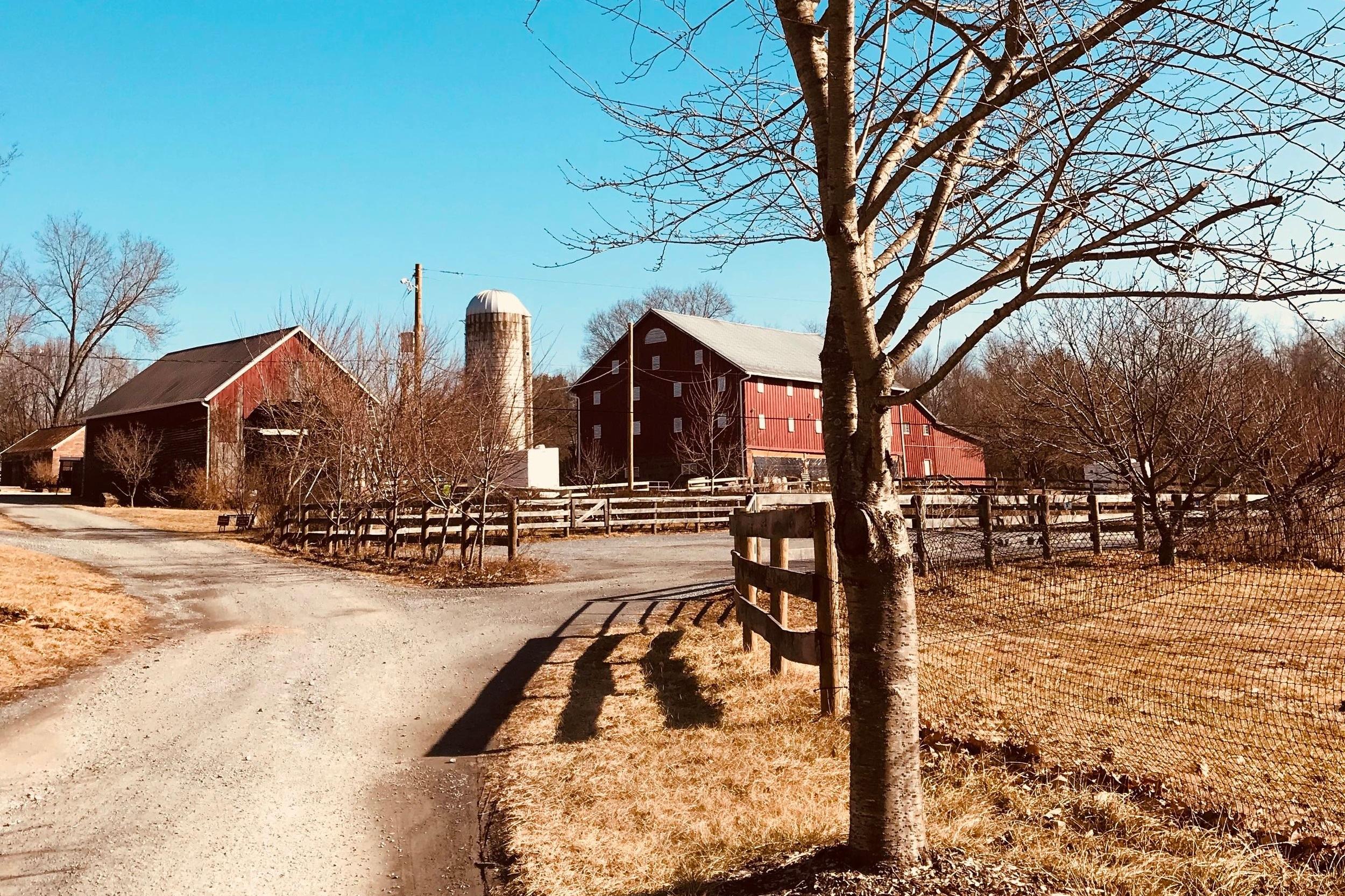 Rocklands Farm