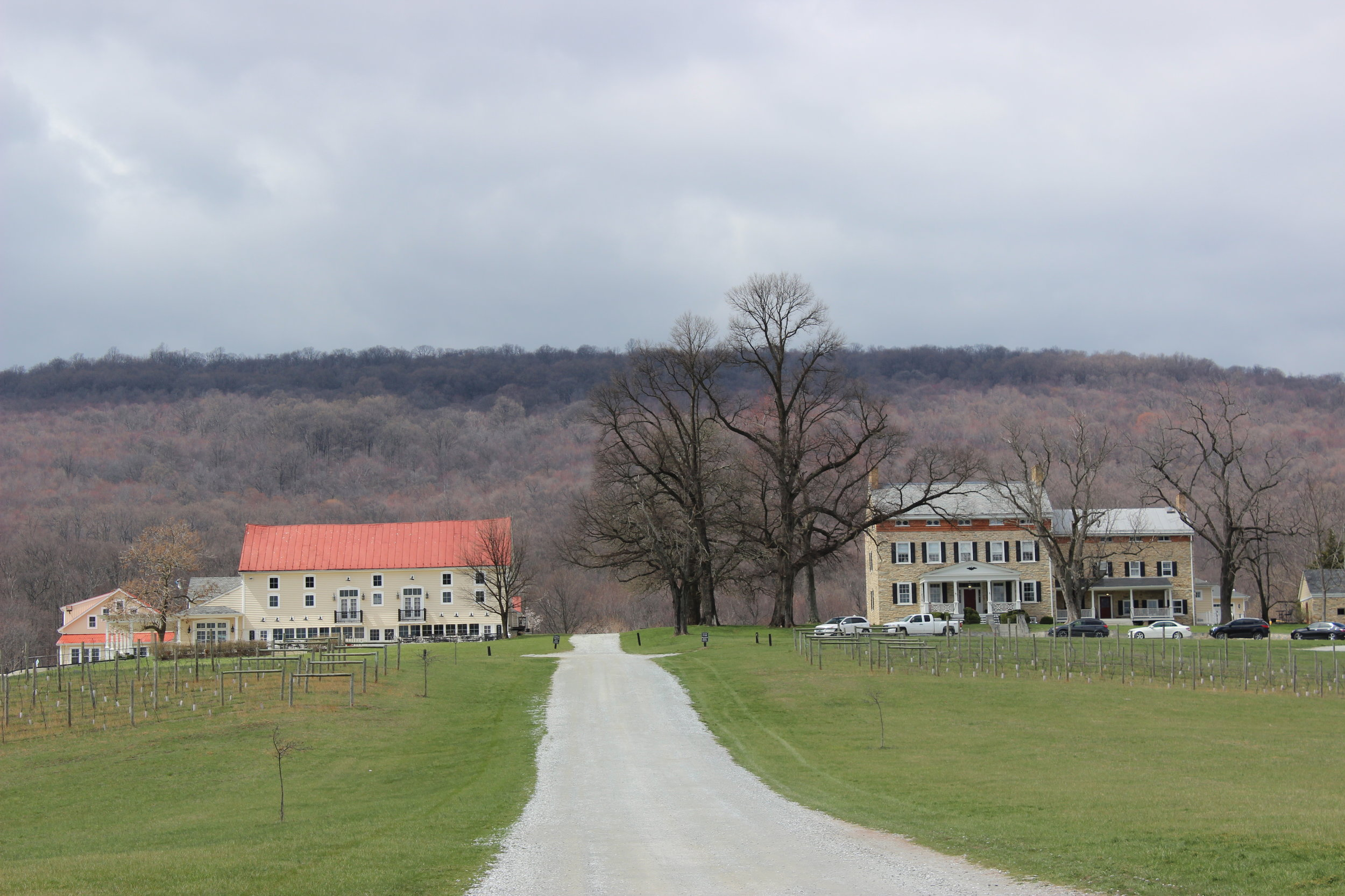 Springfield Manor Winery