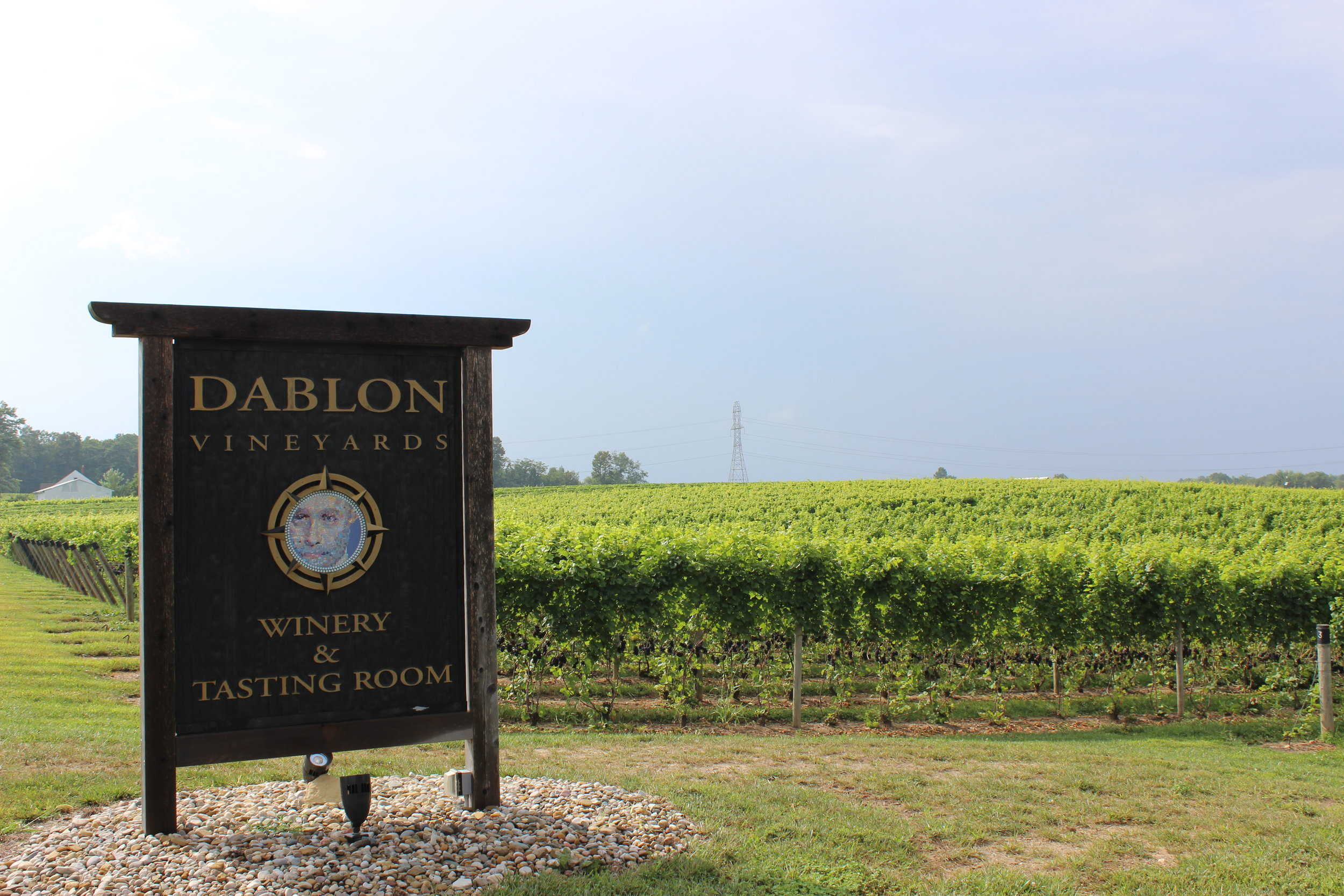 Dablon Vineyards