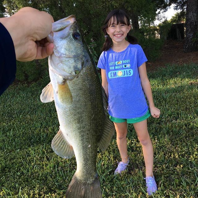 We went fishin'. Crankbaits and poppers did the job. Dad casted. They caught'em.  #fish #fishing #gonefishing #largemouth #largemouthbass #largemouthbassfishing #bassfishing #fishinglocal #baitstealer #catchandrelease #pondlife #pondfishing #mmbigbass #florida #outdoors #weekend #saturday