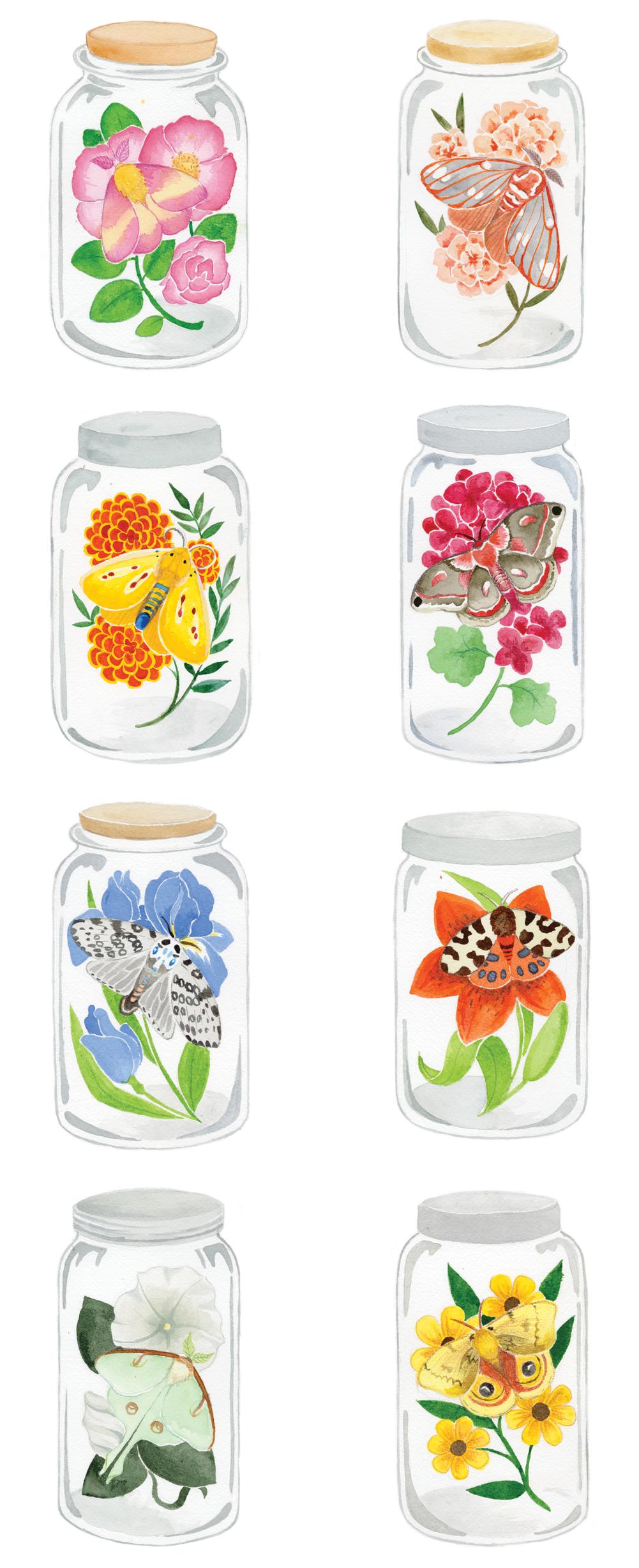 Moth Jars