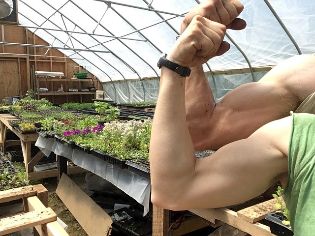Suns out (finally) guns out. Message me if you need us to move anything heavy. #nakedhomefront