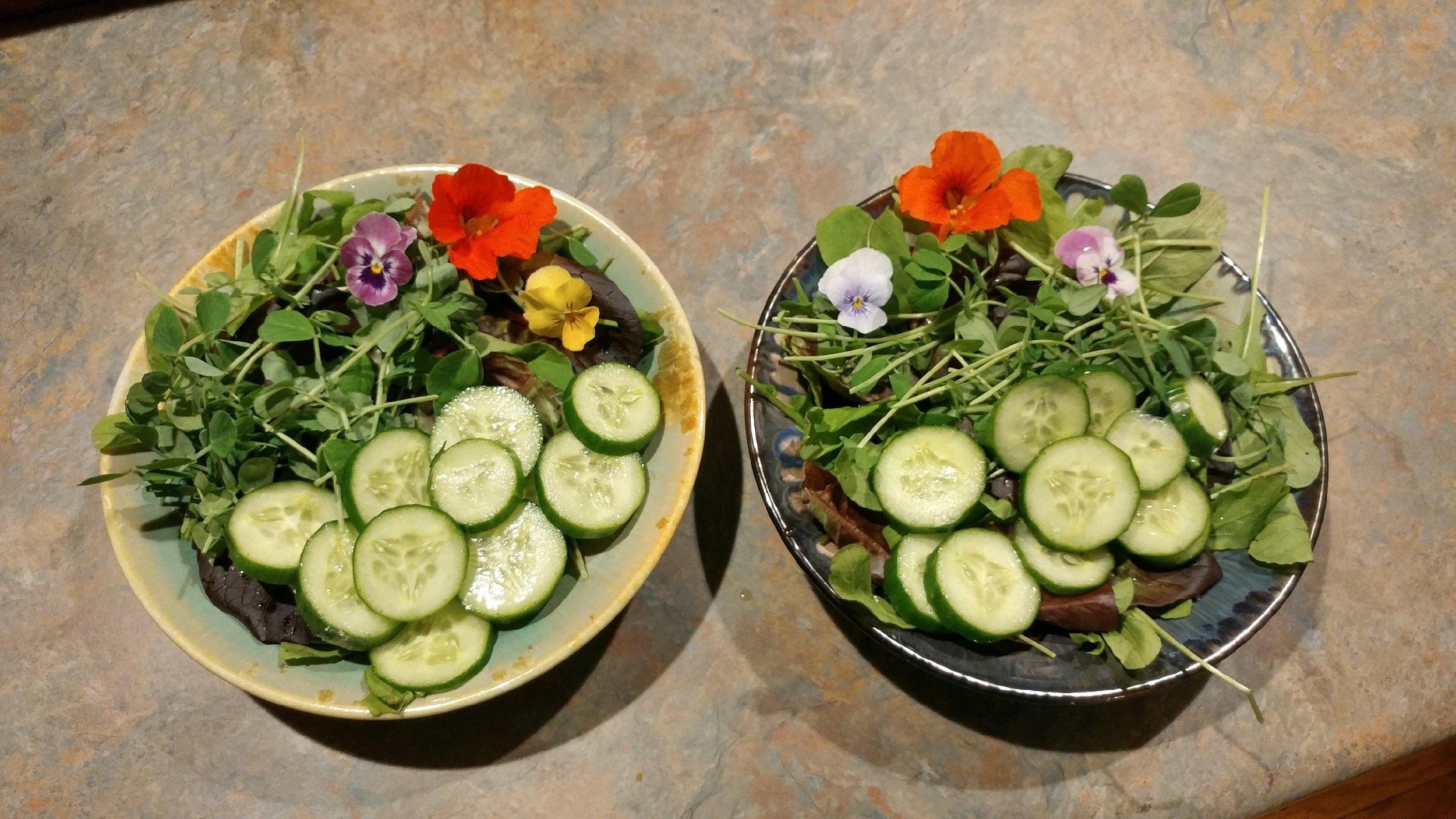 beautiful salad!!