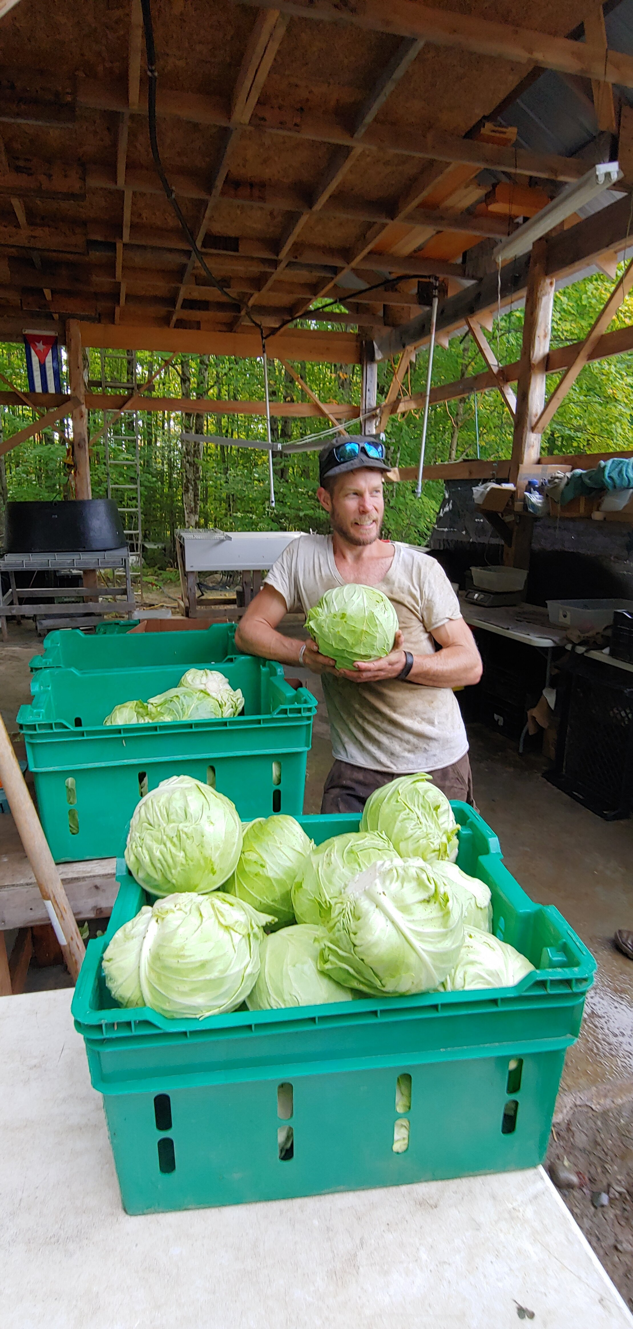 Proud cabbage boy