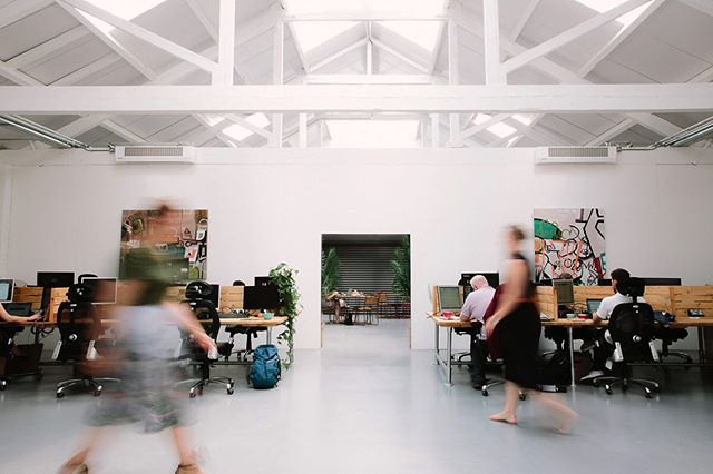 Natural light, open spaces, extensive desks.  Productivity is what we're all about here at QC and we've got the perfect combination of elements to make it happen.  Why don't you pop in today and have a little look around? 📸 @philippajames