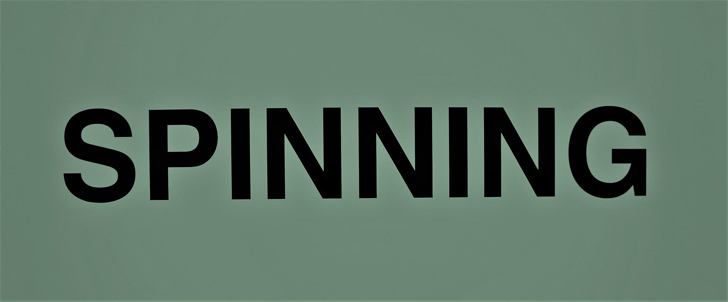 spin2.jpg