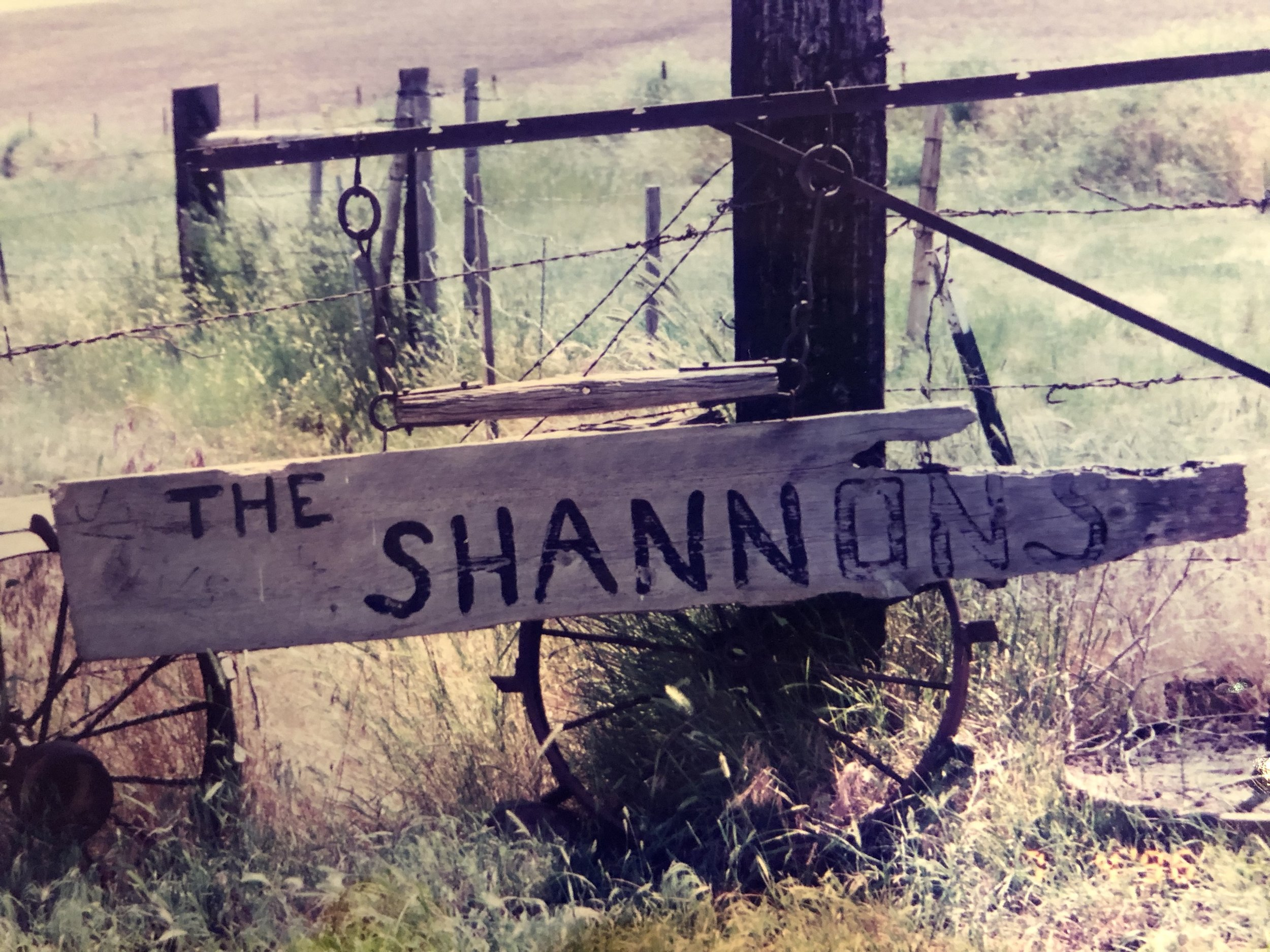 At the Shannon ranch