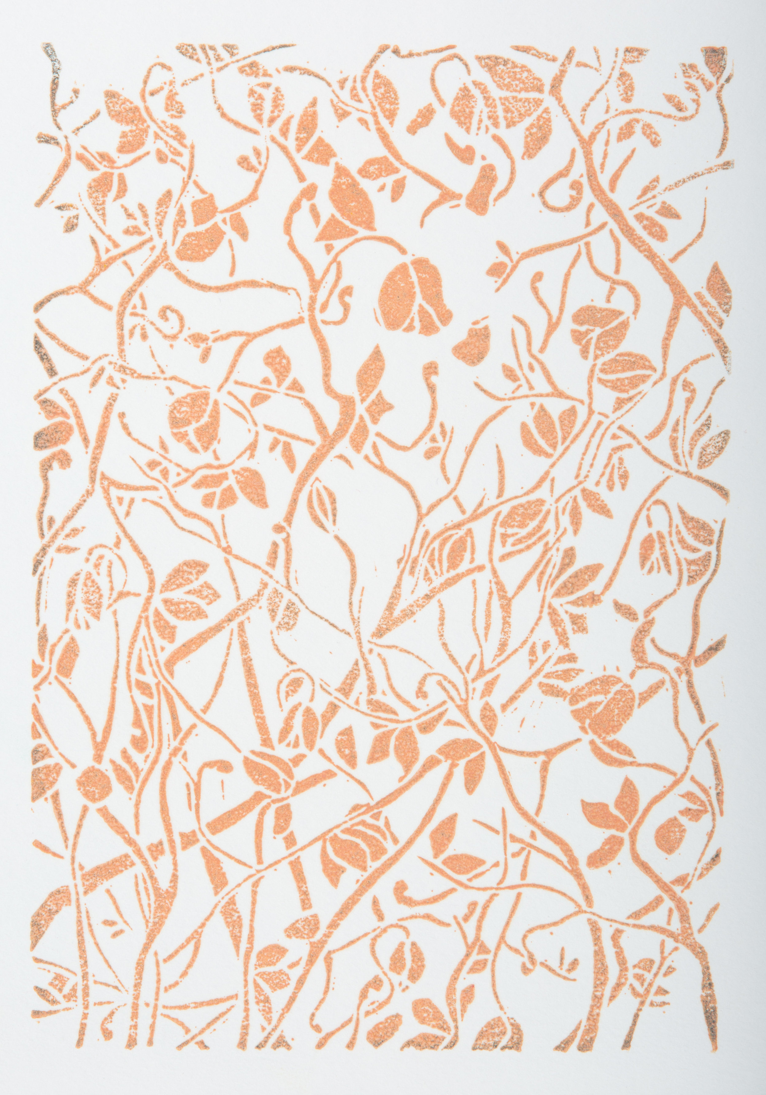 Dying Rose Orange.jpg