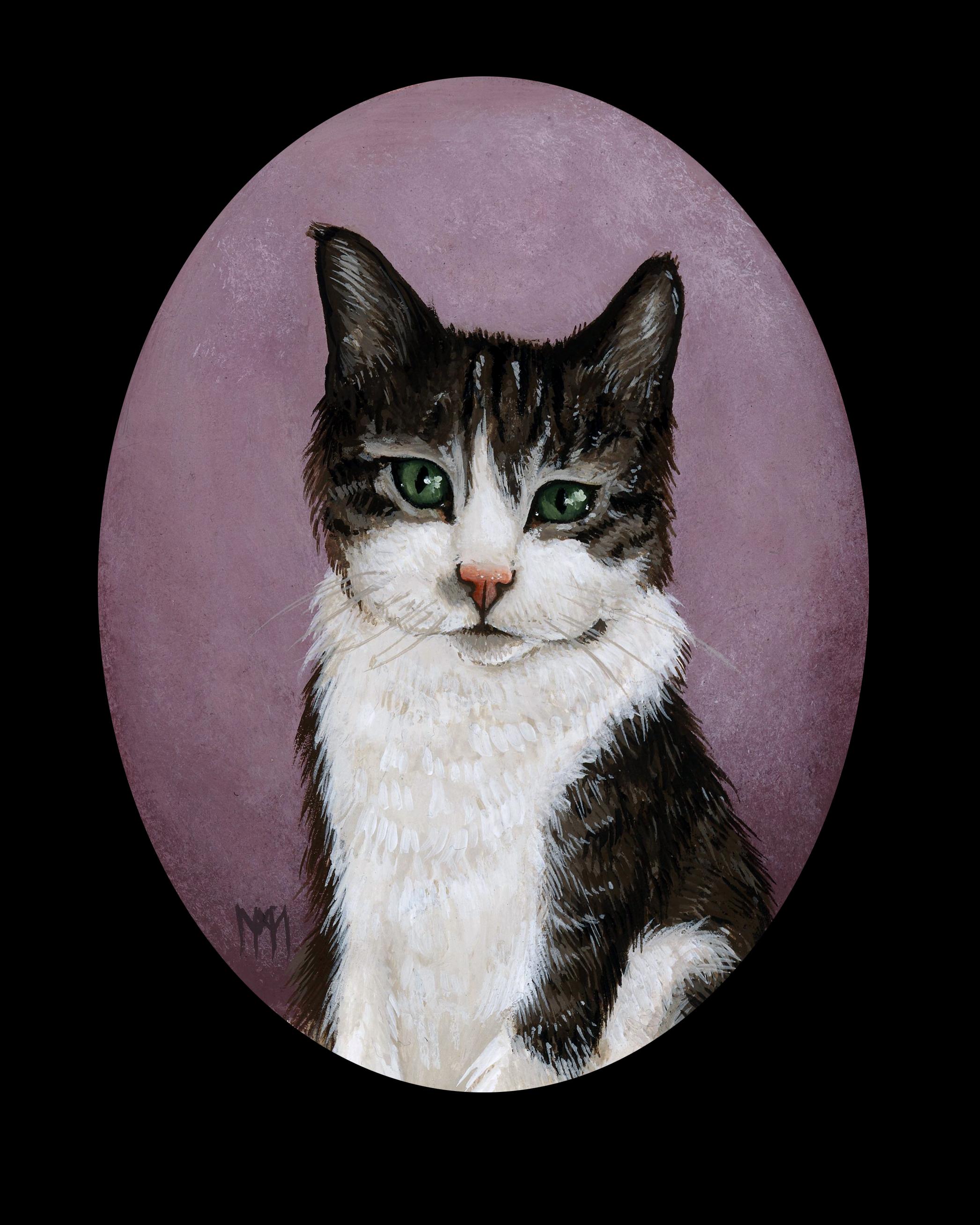 Aileen's Cat
