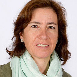 Rosa M. Badia Manager of the Workflows and Distributed Computing Group Barcelona Supercomputing Center