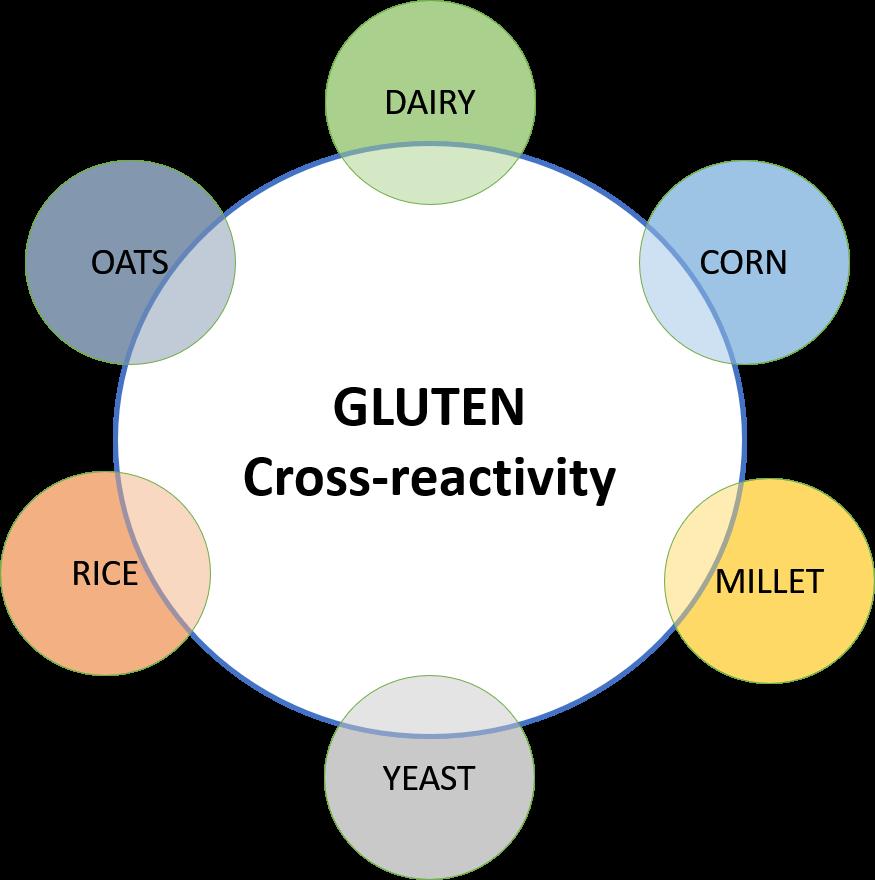 CROSS REACTIVITY GLUTEN.png