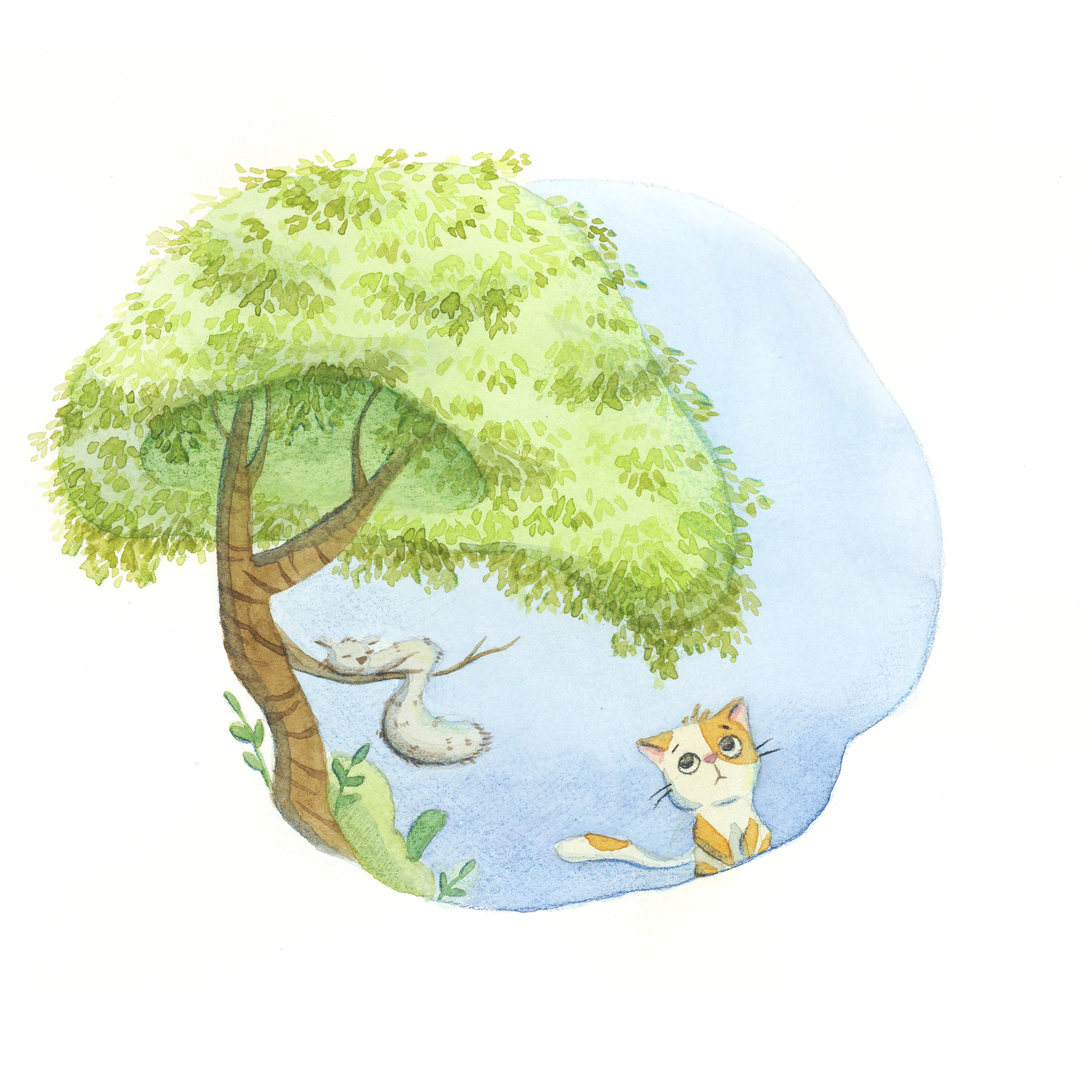 Children Illustration Tree Spot.jpg