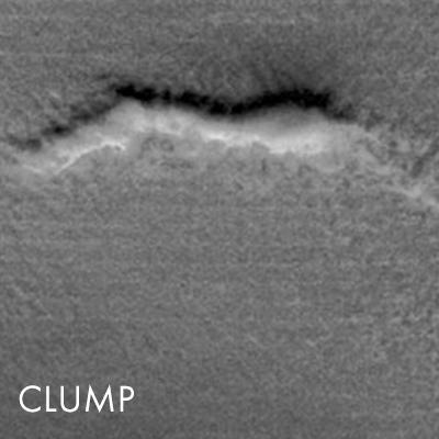 nw-clump.jpg