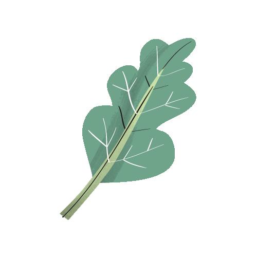 green kale.png