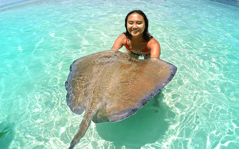 SOUVENIR PHOTOS - We have a photographer on site to create your most treasured souvenir from your Stingray City Bahamas visit!