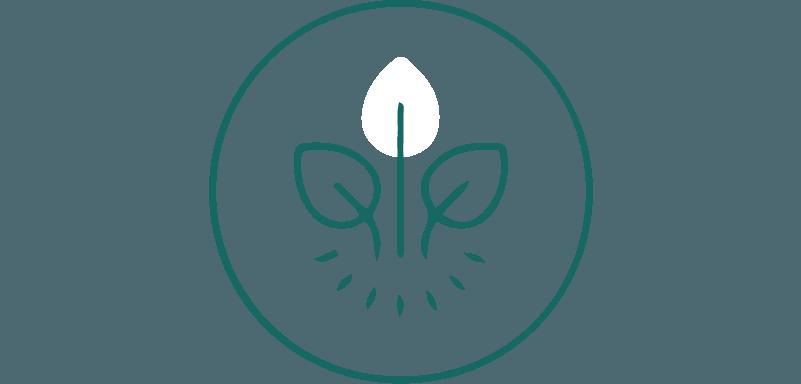 Formules naturelles,  concoctées à partir d'ingrédients  biologiques.