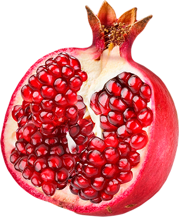 week 6 pomegranate seed.png