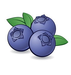 week 7 blueberry.jpg