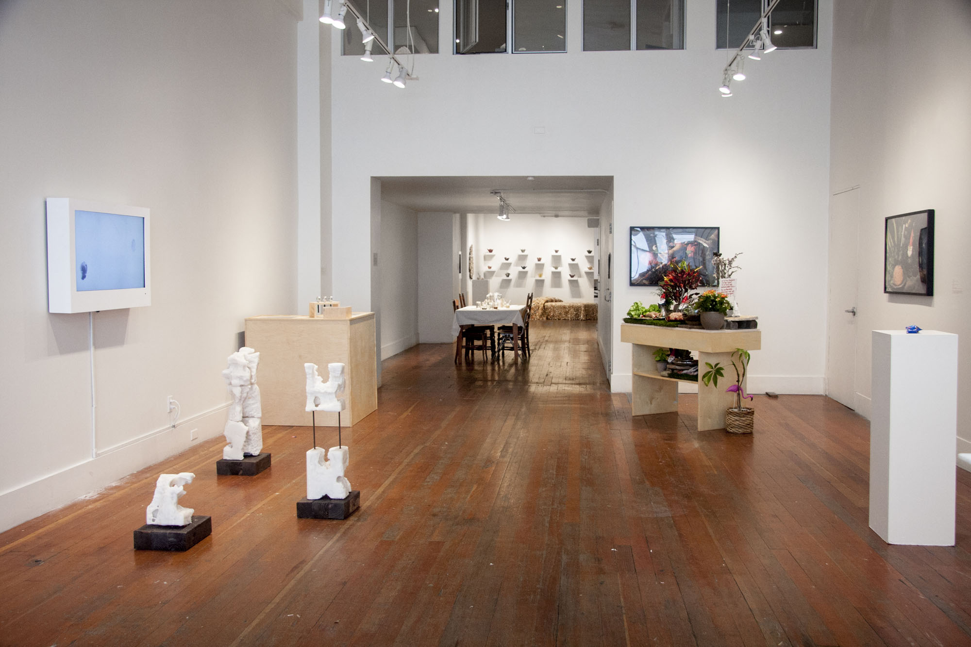 Gallery view of installation