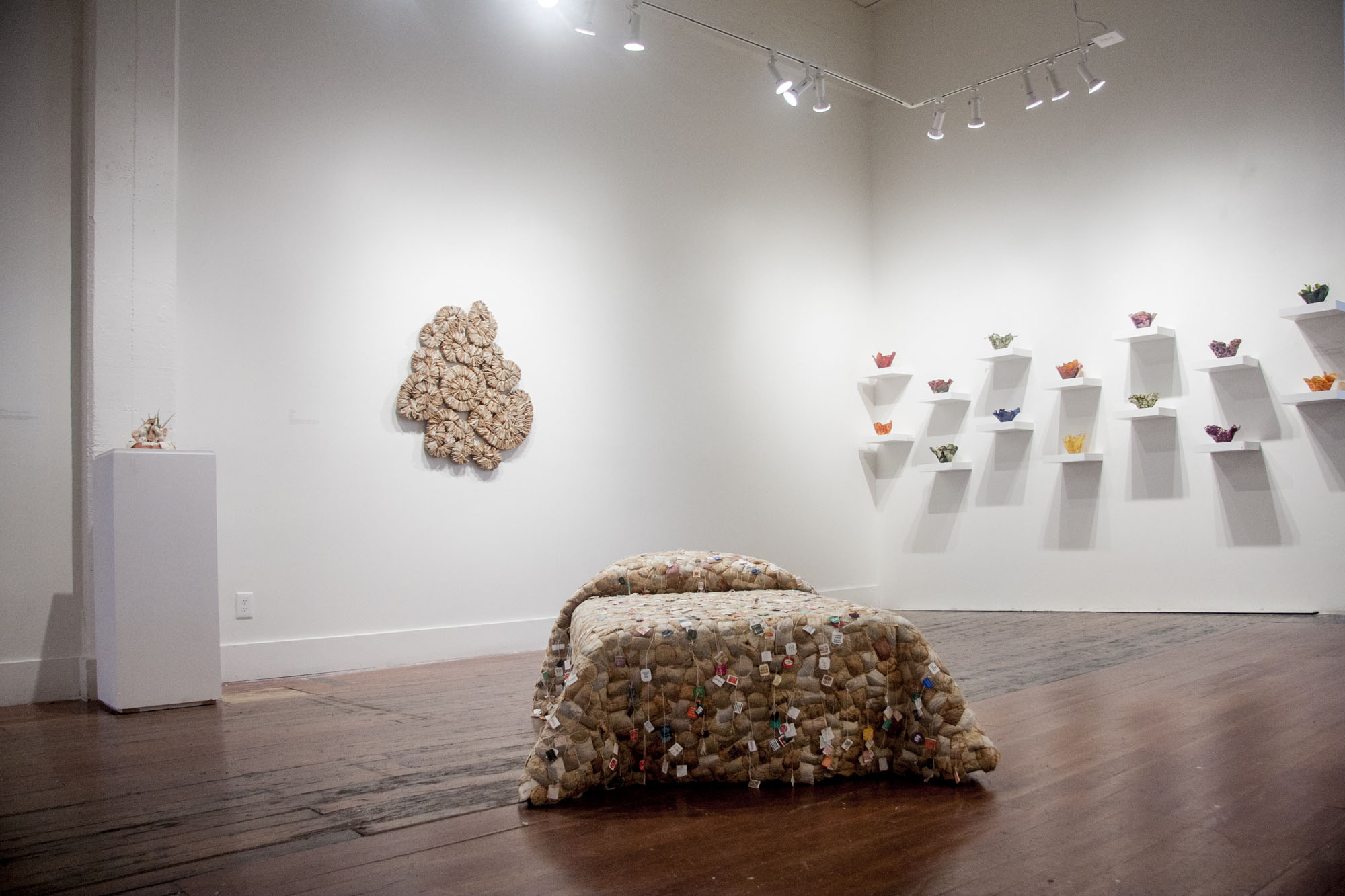 Colony and Extending the Useful Life, installation view