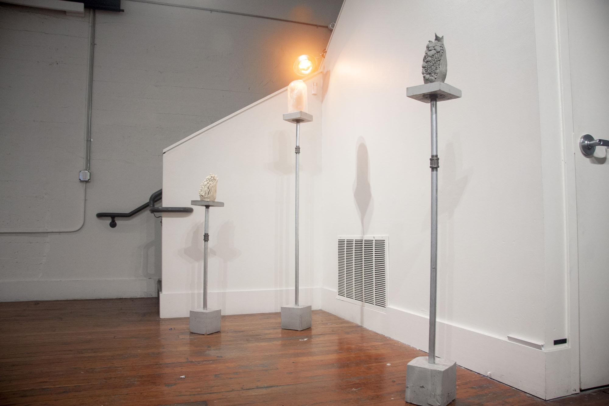 Installation view of Alvaro Azcarraga's Huilocoche series