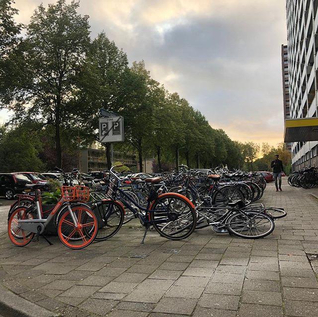 Het aantal fietsen op de wereld heeft inmiddels de magische grens van 1 miljard gepasseerd. Maar waarom slaat het gebruik van de tweewieler onder Nederlanders nou zo aan? (link in bio). 📸= @owendhg  #fietseninnederland #fietsers #fietsen #ebikes #bovag #onderneemvandaag