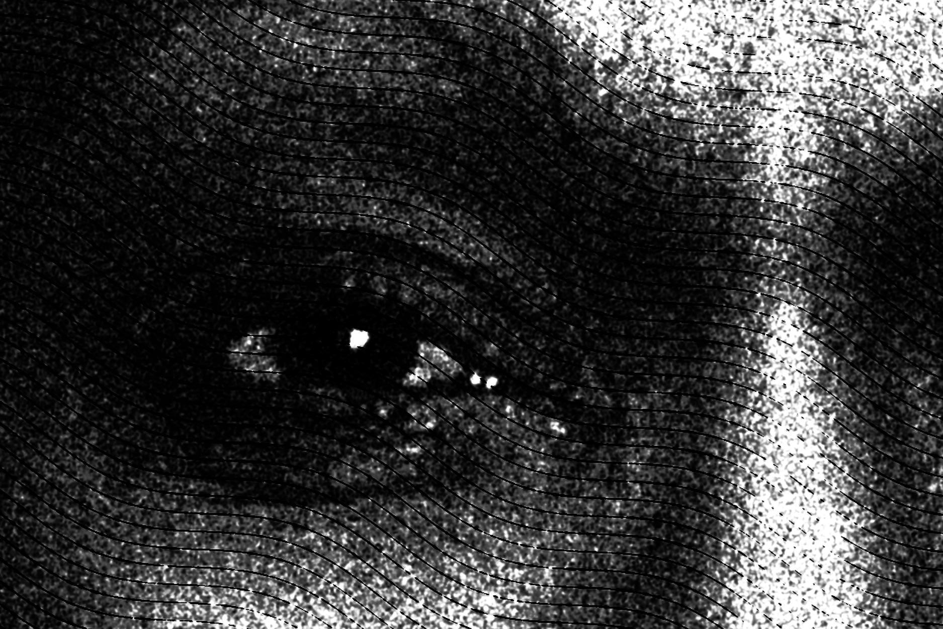 agent panel front v9_Detail_BW.jpg